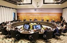 L'APEC 2017 a rehaussé le rôle et la position internationaux du Vietnam