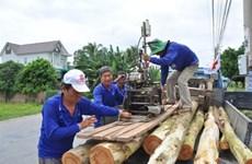 Ils construisent des maisons pour les plus démunis à Dông Thap Muoi