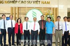 Le chef du gouvernement travaille avec le Groupe de caoutchouc du Vietnam