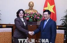 Le vice-Premier ministre Pham Binh Minh reçoit la nouvelle ambassadrice de Cuba
