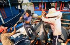 Publication d'un livre blanc sur la pêche INN au Vietnam