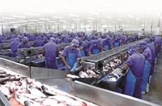 """2017, un """"grand cru"""" pour les exportations vietnamiennes"""
