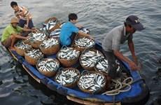 Mer Orientale: Coopération dans la gestion de la pêche et la protection de l'environnement