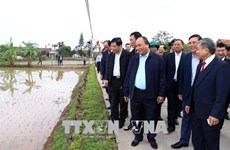 Le chef du gouvernement exhorte à faire de Hai Hâu un district néo-rural modèle