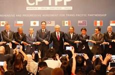 CPTPP, un nouveau niveau d'intégration internationale du Vietnam