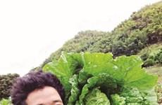Quand un jeune Mông de Son La applique des technologies agricoles israéliennes