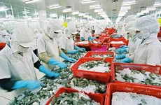 Exportations de crevettes, fruits et légumes : Bilan et perspectives
