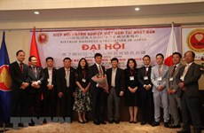 Renforcement des liens entre les entreprises vietnamiennes au Japon