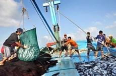 Pêche INN: Comment le Vietnam a traduit ses engagements en actions