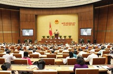AN: les projets de loi sur les unités administratives et économiques spéciales et la planification au débat