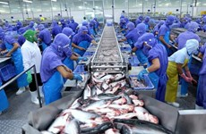 L'aquaculture vise une production et une exportation durables