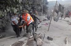 Le Vietnam adresse un message au Guatemala après l'éruption du volcan de Fuego