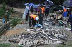 La Croix-Rouge du Vietnam accorde une aide aux victimes des crues