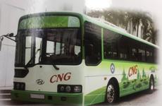 Hanoi lance des bus alimentés au gaz naturel comprimé