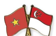 Hô Chi Minh-Ville célèbre les 45 ans des relations diplomatiques Vietnam-Singapour