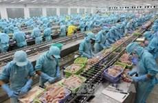 Le respect des critères de travail, clé de l'aquaculture durable