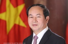 Le Vietnam souhaite promouvoir le développement de ses relations avec l'Egypte