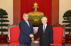 Belles perspectives des relations économiques Vietnam-Hongrie