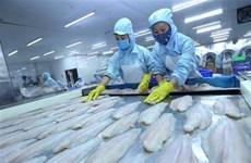 Le système d'inspection des siluriformes du Vietnam équivaut à celui des États-Unis