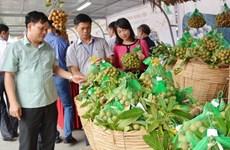 Le chiffre d'affaires à l'export du secteur agricole atteint 29,54 milliards de dollars en 9 mois