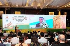 Des pistes pour doper les exportations de riz vietnamien