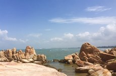 Binh Thuân développe ses potentiels en tourisme maritime