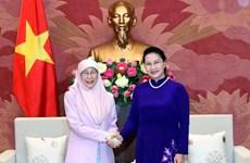 La présidente de l'AN Nguyên Thi Kim Ngân reçoit la vice-PM malaisienne Wan Ismail