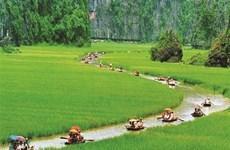 Ninh Binh, l'éveil de la Belle Endormie