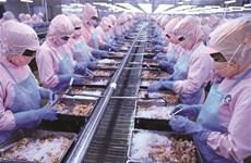 Les exportations de crevettes dépasseront 4 milliards de dollars