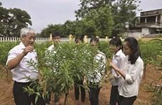 """Articulation """"théorie-pratique"""" dans la formation à Phu Tho"""