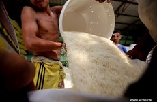 Les exportations de riz rapportent 435,96 millions de dollars au Myanmar