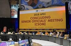 Le Vietnam participe à la CSOM 2018 de l'APEC en Papouasie-Nouvelle-Guinée