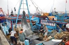 Les programmes d'aide soufflent un vent frais sur la filière pêche