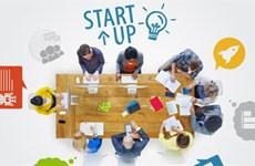 Étudiants startuppers: ces nouveaux entrepreneurs