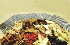 Des efforts à fournir pour revigorer la médecine traditionnelle
