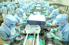 L'EVFTA promeut le partenariat économique Vietnam-France