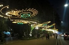 Hanoï : de nombreuses activités pour accueillir le Nouvel An lunaire 2019