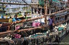 Pêche : la Commission européenne retire son « carton jaune » à la Thaïlande