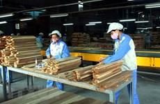 Forte croissance des exportations nationales de bois dans de nombreux marchés