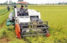 L'agriculture vietnamienne sur le chemin de son intégration