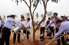 La fête de plantation d'arbres s'ébranle dans plusieurs localités
