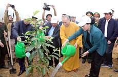 La présidente de l'AN incite à promouvoir la fête de plantation d'arbres