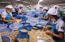 Faire du Vietnam l'un des 10 plus grands transformateurs agricoles du monde