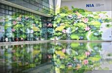 Nôi Bài figure parmi les 100 meilleurs aéroports du monde selon Skytrax