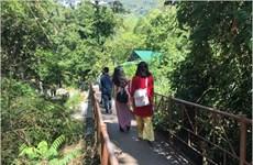 Départ en safari au Parc national de Phuoc Binh, dans le Centre