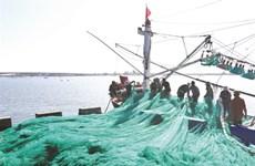 Pêche INN: le Vietnam s'emploie à retrouver la carte verte