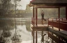 Le tourisme du bien-être en vogue au Vietnam