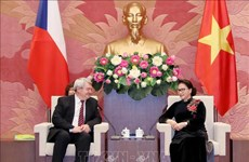 Pour approfondir les relations parlementaires Vietnam-R. tchèque
