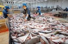 Belles perspectives pour les exportations nationales de pangasius vers les 10 pays membres du CPTPP