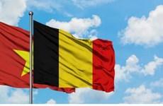 Le Vietnam félicite la Belgique pour la Fête nationale belge
